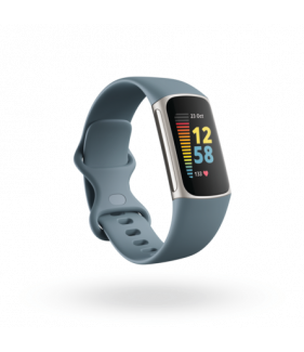 Fitbit Charge 5 Fitness Tracker-Steel Blue/Platinum Stainless Steel